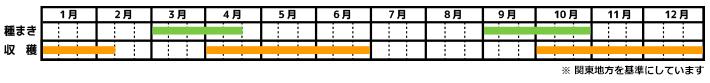 ほうれん草_栽培カレンダー