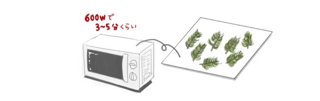 ローズマリー_乾燥方法